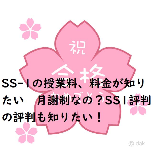 SS1評判